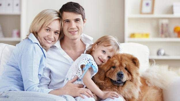 Wills & Trusts dog-young-family Direct Wills Richmond